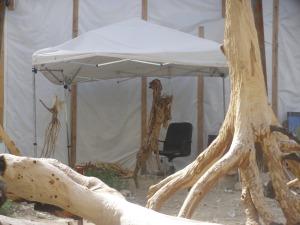 La tente du président des tilleuls renversés a été vide tout l'été.