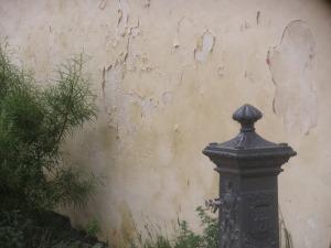 Le beau crépi du jardin Bashung, an 1.