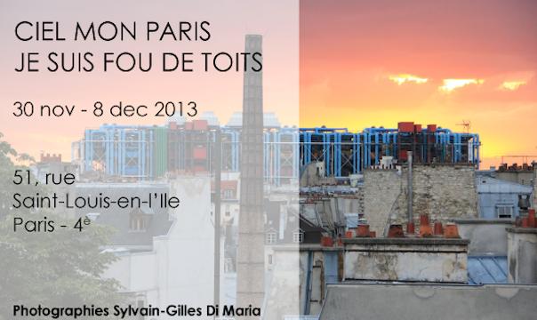 Exposition Sylvain-Gilles Di Maria.  Espace Chenizot, 51 rue Saint Louis en l'Île